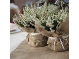 Бонбоньерка свадебная ручной работы