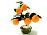Copac de mandarină Feng Shui talisman de noroc