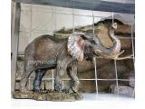"""Статуэтка """"Могучий благородный слон"""""""